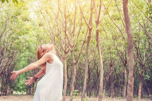 Freedom enjoy natural concept Young beautiful asian women stretch enjoying with fresh air in the forest look so happy